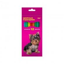 Карандаши цветные 12 цветов коробка картон Koh-I-Noor,Hatber,Berlingo