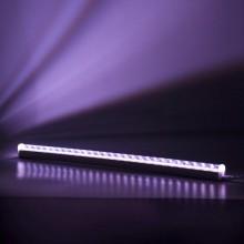 Светильник для растений светодиодный линейный 560мм ULI-P20 -10W/SPSB IP40 WHITE арт.UL-00002991 Лайт